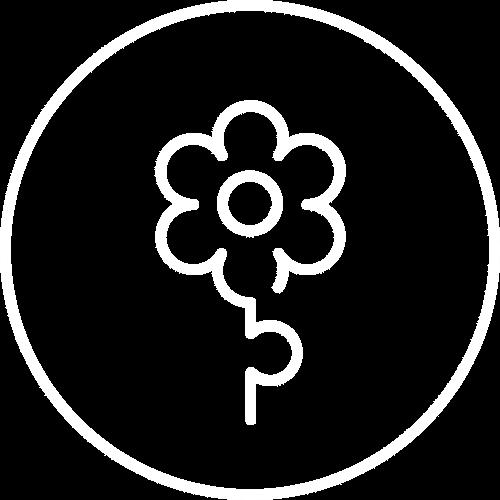 masternaut-sustsainability-icon